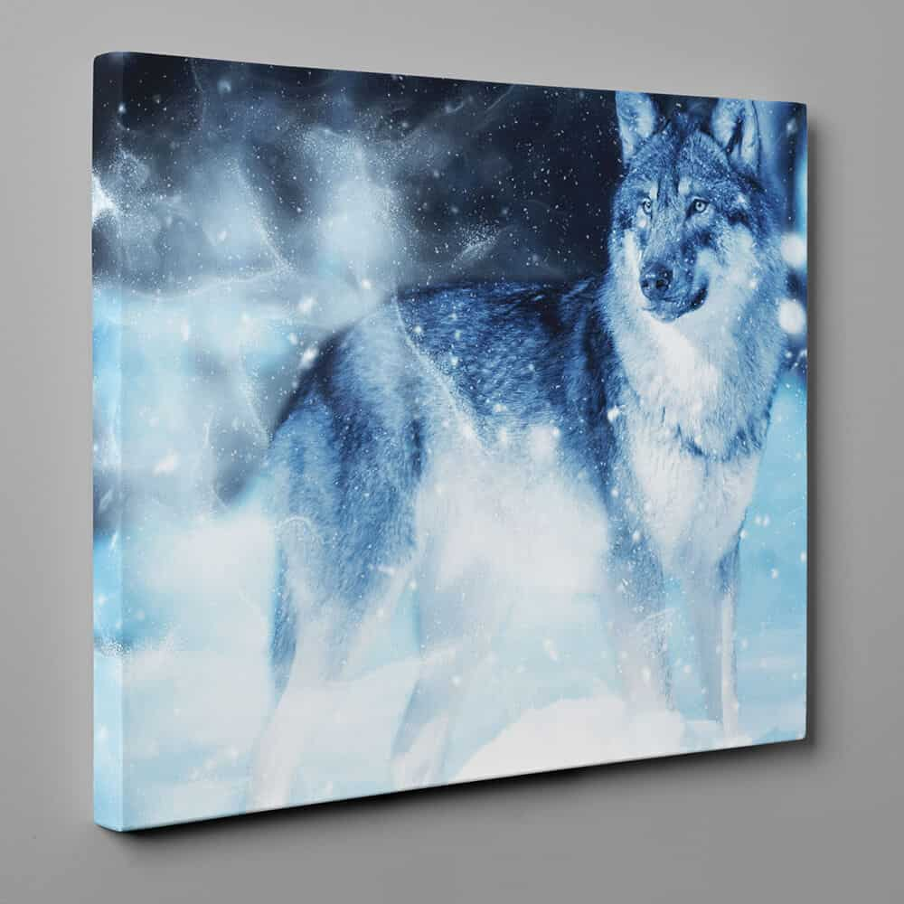 Lone Gray Wolf In Winter Canvas Wall Art