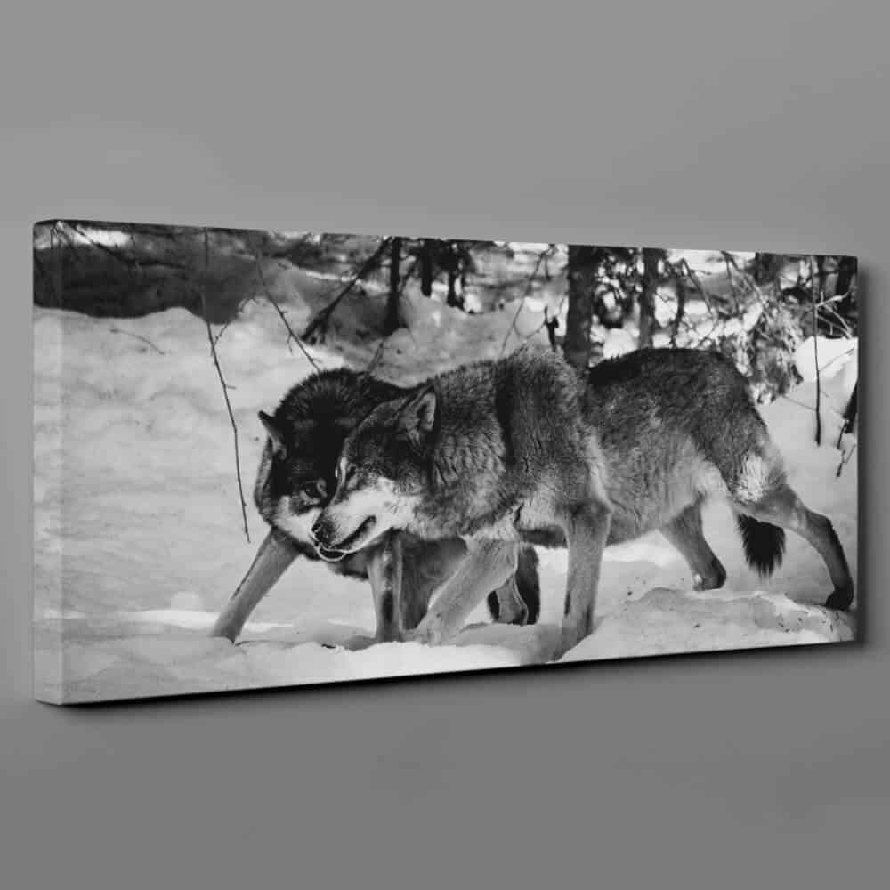 2 Wolves Hunting In The Snow In Winter Canvas Wall Art