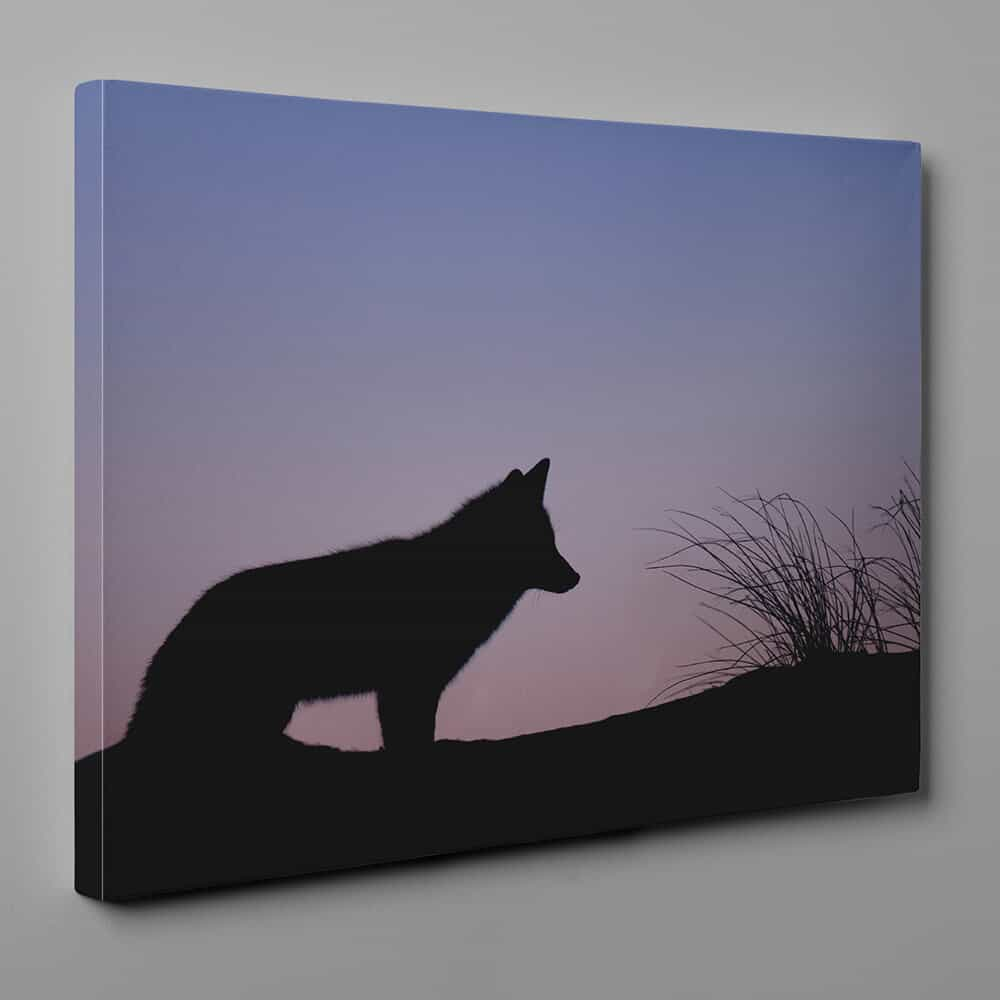 Wolf Silhouette At Down Canvas Wall Art