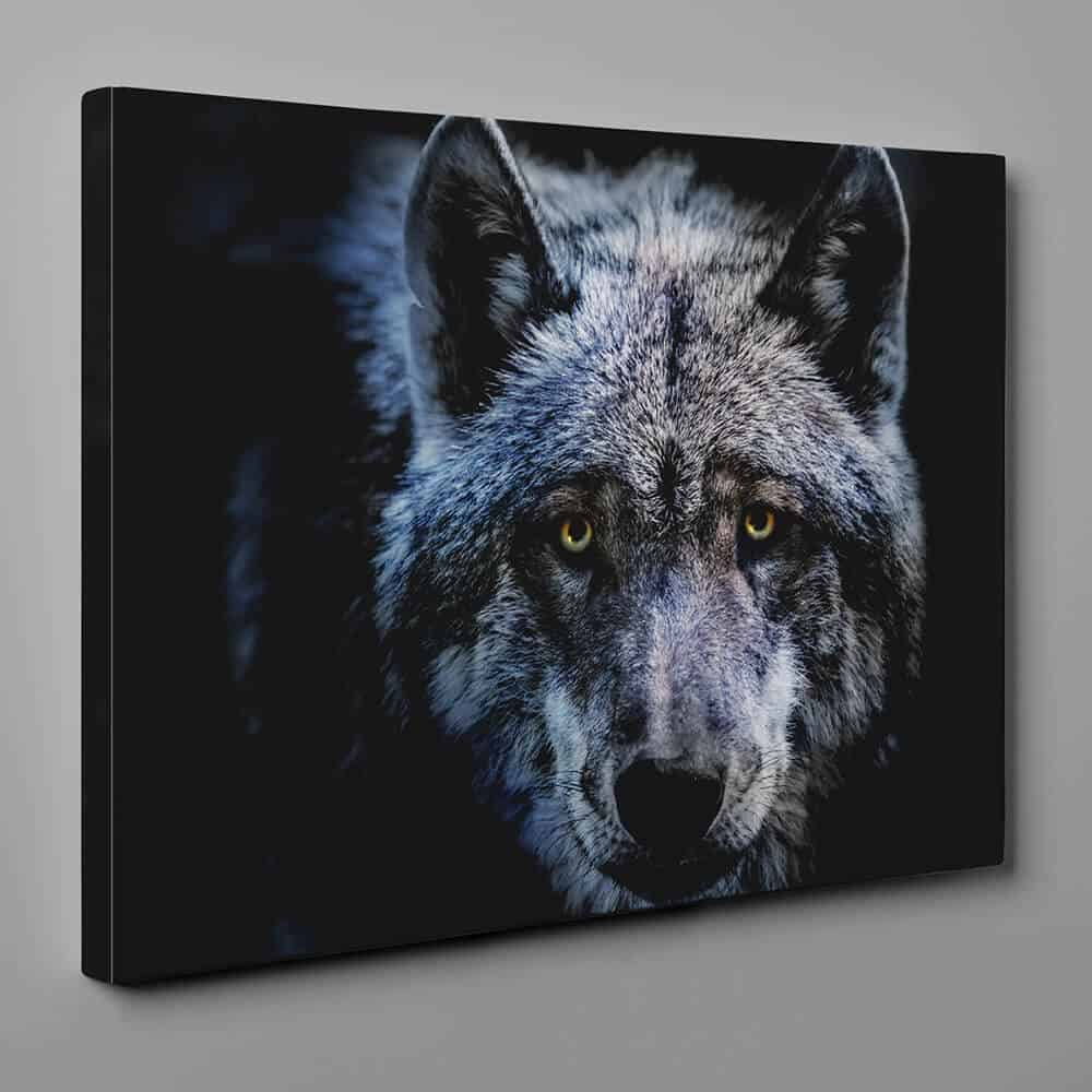 Wolf In The Dark - Close Up Canvas Wall Art