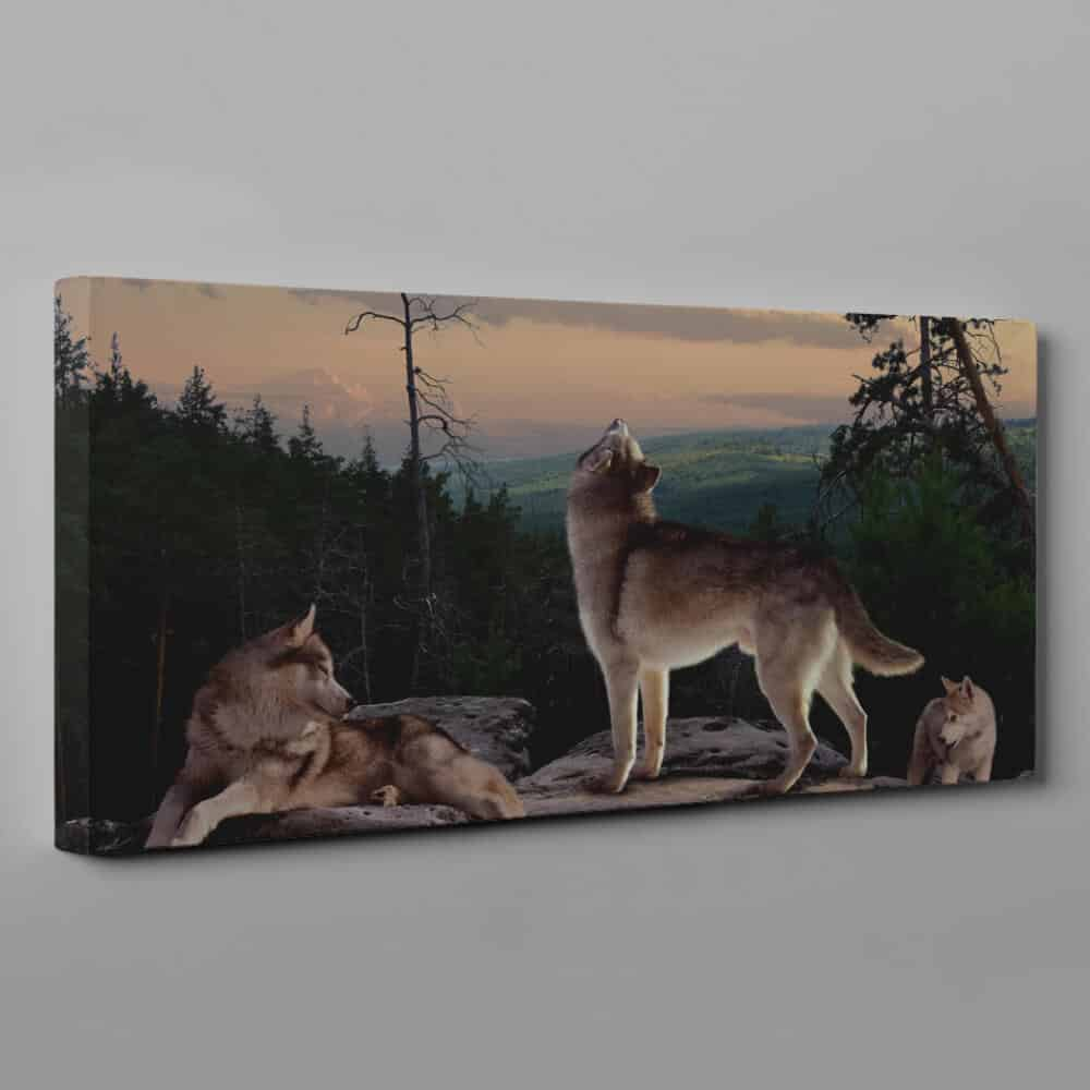 A Pack Of Wolves On The Rock Canvas Wall Art