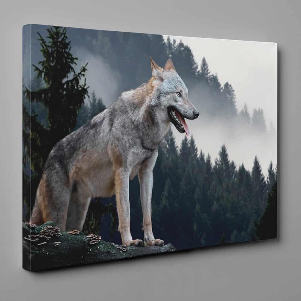 Wolf Standing In The Mountains Canvas Wall Art