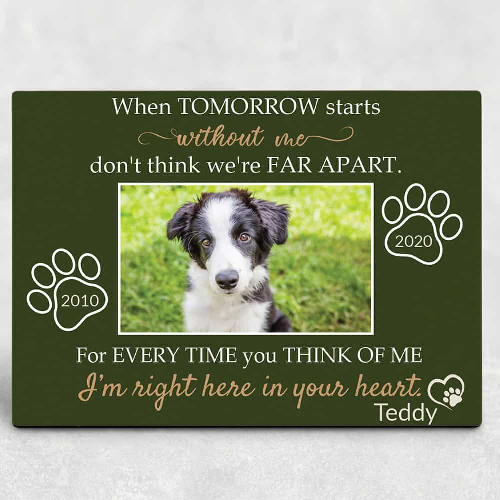 When Tomorrow Starts Without Me - Pet Memorial Plaque