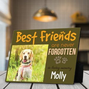 Best Friends Are Never Forgotten Custom Photo Pet Lover Desktop Plaque