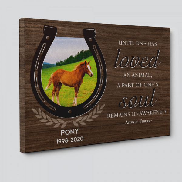 horse picture on canvas print