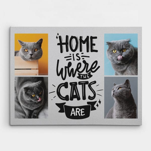 Home Is Where The Cats Are - Photo Collage Canvas Print